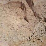 Bush Sand Sample
